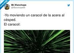 Enlace a El caracol lo flipa a altas velocidades, por @WanchopeMr