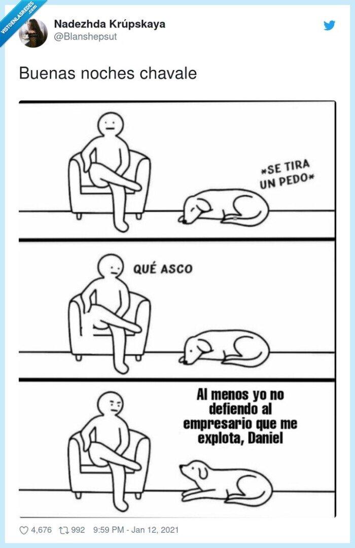 empresario,explotación,perro