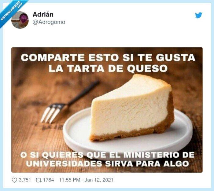 compartir,ministro,tarta de queso,universidad
