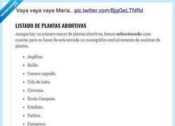 Enlace a Baia baia María, por @ErigolDelViento