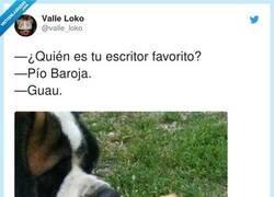 Enlace a Guau, por @valle_loko