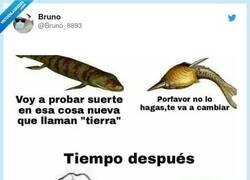 Enlace a La evolución, por @Bruno_8893