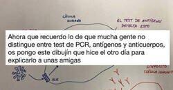 Enlace a ¡Por fin! La diferencia entre PCR, antígenos y anticuerpos explicado de forma fácil, por @CarmenAgustin