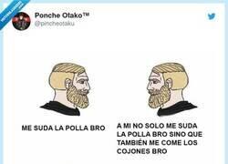 Enlace a Dos puntos de vista distintos, por @pincheotaku