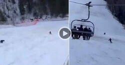 Enlace a Pa' cagarse patas abajo: Un esquiador es perseguido por un oso mientras está bajando en plena pista de esquí