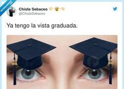Enlace a Vista graduada, por @ChisteSebaceo