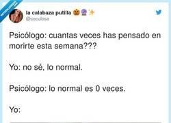 Enlace a Lo normal, vamos, por @coculosa