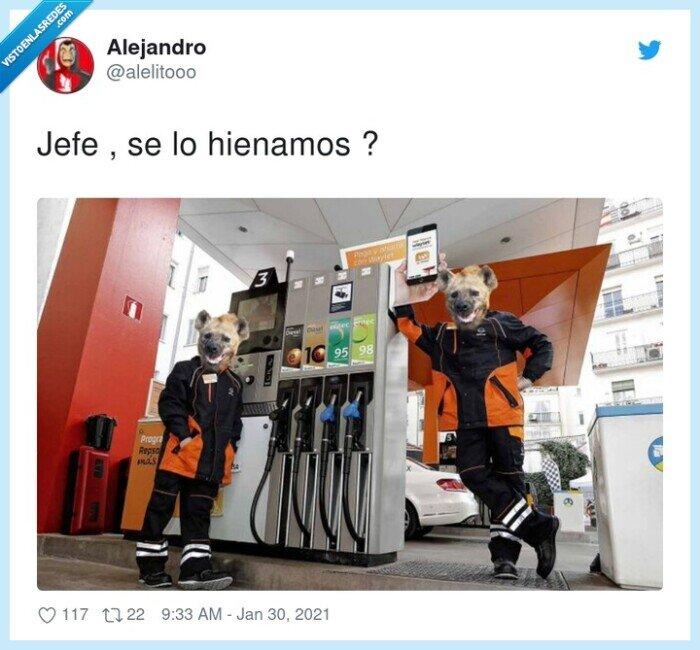 gasolinera,hiena,hienamos