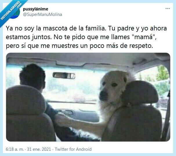 familia,mamá,mascota,respeto