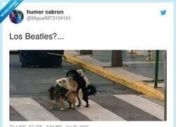 Enlace a No. los Stones imitando a los Beatles, por @MiguelM73104161