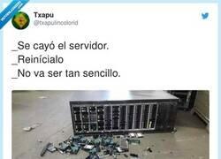 Enlace a Se ha caído el servidor, por @txapulincolorid