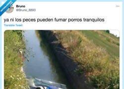 Enlace a La poli en todos lados, por @Bruno_8893