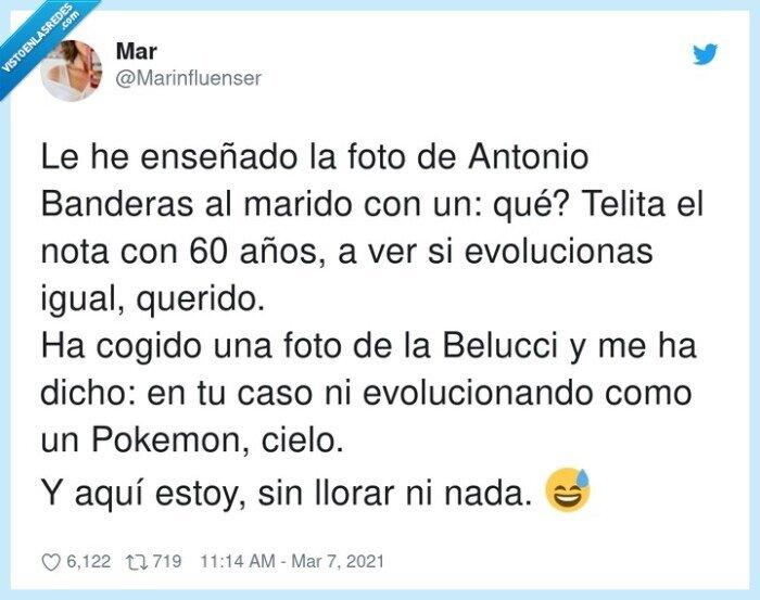 antonio banderas,belucci,buenorro,pokemon