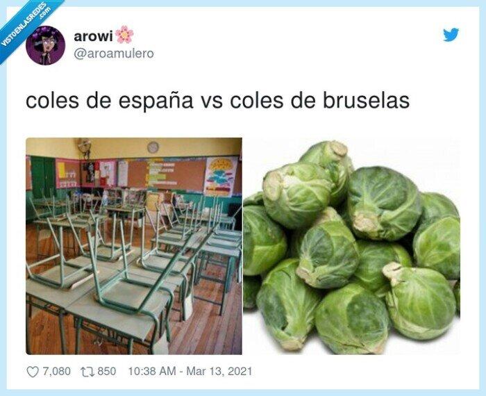 bruselas,coles,españa