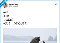 Enlace a QUÉ DE QUÉ, por @empeltada