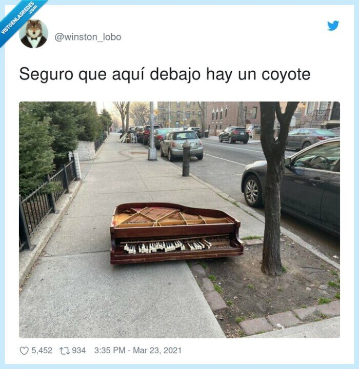 correcaminos,coyote,debajo,piano roto,seguro