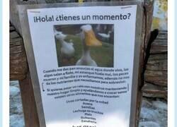Enlace a Este anuncio de este pato quejándose es sencillamente sublime, por @Acomegalleta