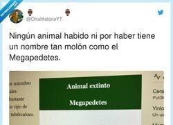 Enlace a Fan del megapedetes, por @OtraHistoriaYT