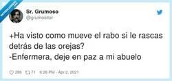 Enlace a Este puede aportar ofendiditos, por @grumositor