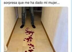 Enlace a Su mujer le prepara una sorpresa en forma de pétalos de rosa y el final lo deja con un marrón encima, por @MigueI4ngeI