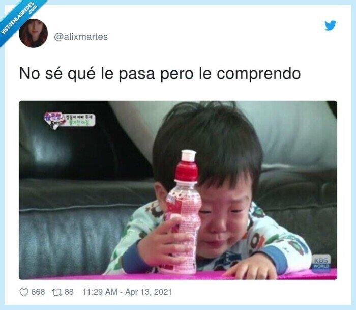 comprender,llorar,niño