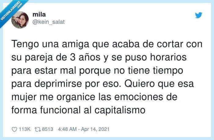 capitalismo,deprimirse,emociones,funcional,horarios,organizar