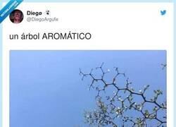 Enlace a Aromático es un compuesto orgánico derivado del benceno, en química se dibuja de esta forma, por @DiegoArgufe