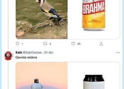Enlace a Hilo de aves ibéricas como cervezas, mezclando dos hobbies, por @XabiGaztea