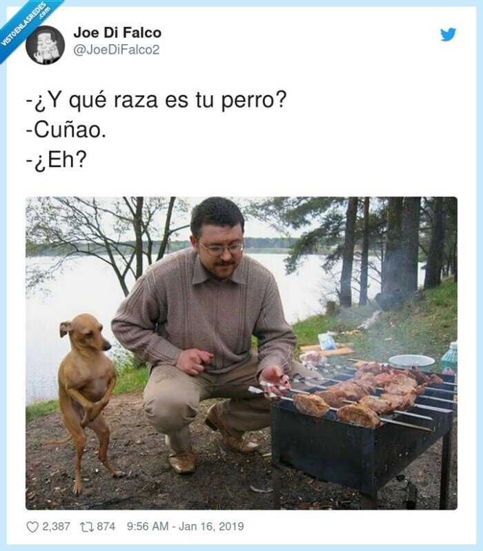 barbacoa,cuñao,perro