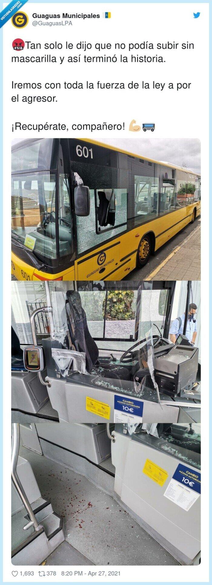 autobús,loco,mascarilla