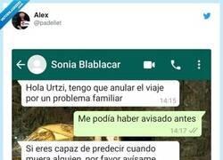 Enlace a Creo que Sonia se ha enfadado, por @padellet