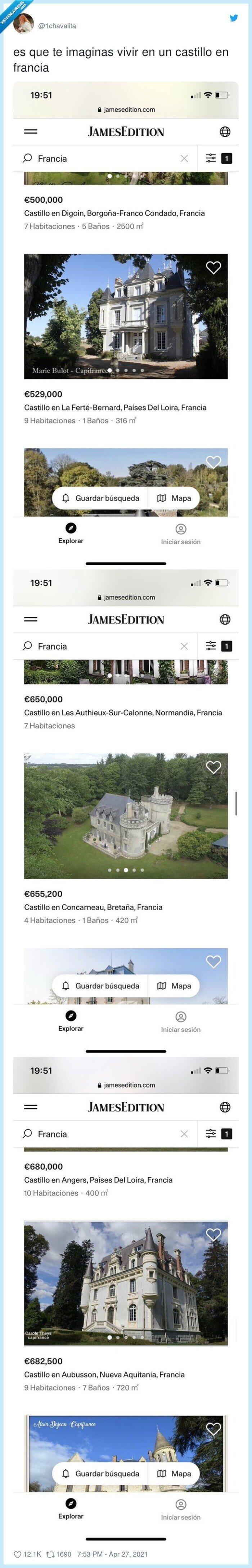castillos,francia,loira,vivir