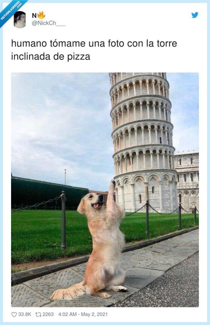 foto,inclinada,pisa,tómame,torre