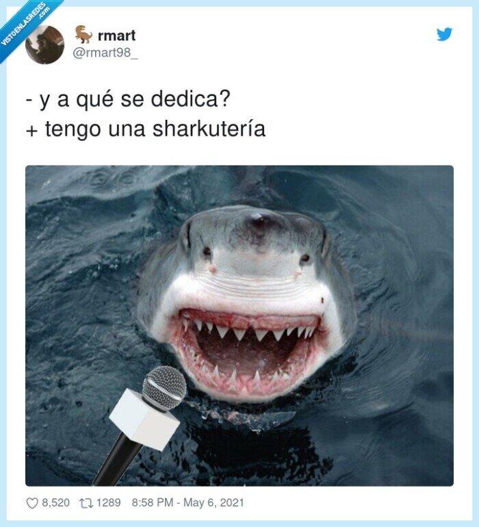 dedicarse,sharkutería,tiburón
