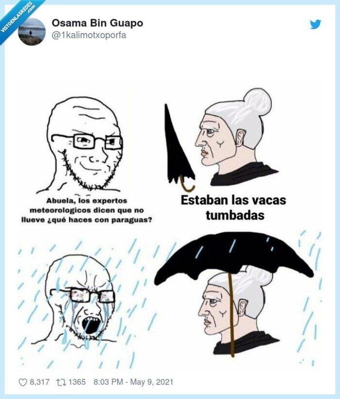 abuela,llover,paraguas,tiempo