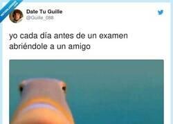 Enlace a Siempre reconforta saber que hay alguien que se lo sabe menos que tú, por @Guille_088