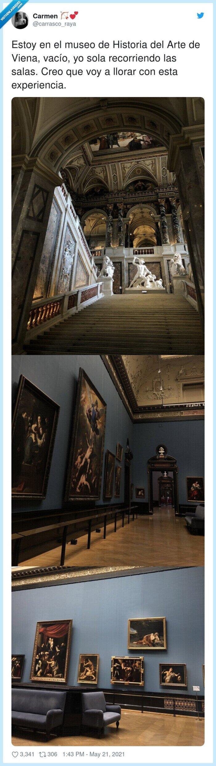 experiencia,historia del arte,museo,recorriendo,vacío,viena