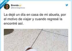 Enlace a Cuanto está jubilada y muy aburrida, por @brendagrecco