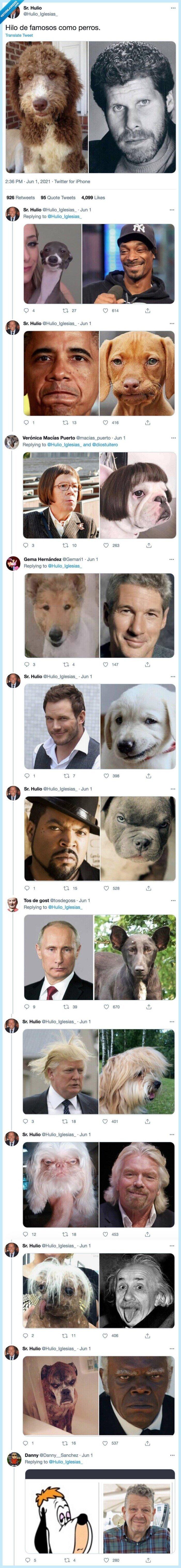 famosos,hilo,iguales,parecidos razonables,perros