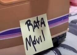 Enlace a Un control de covid sufrido por un coche lleno de ratas en Andalucía, por @raquepuncho