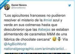Enlace a Abejas adictas al chocolate, por @DanielNorero