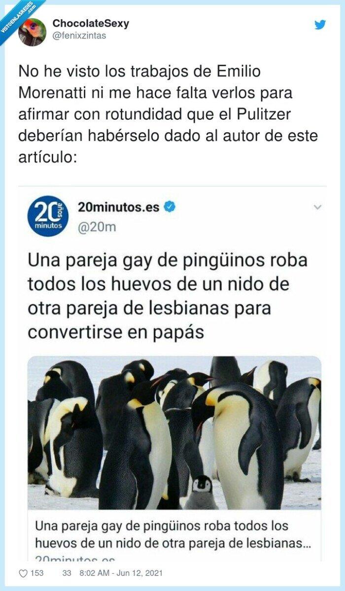 gays,hijos,lesbianas,pinguinos