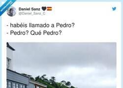 Enlace a Él dirá que estuvo con ellos por videoconferencia de WhatsApp, por @Daniel_Sanz_C