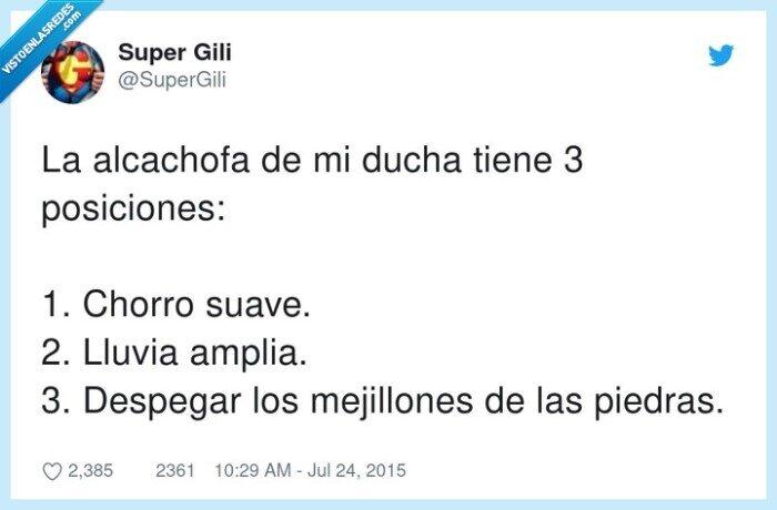 alcachofa,chorro,ducha,mejillones,piedras,posiciones