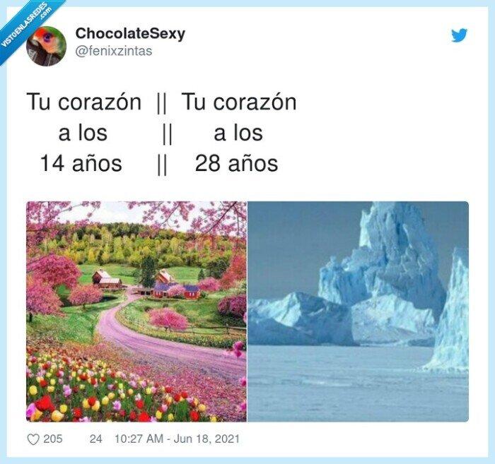 años,corazón,flores,hielo,pasar