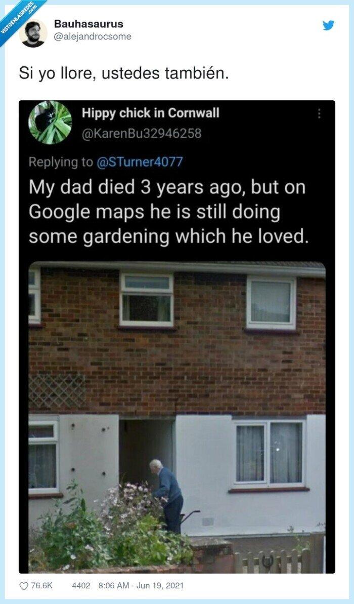google maps,jardinería,muerto,padre
