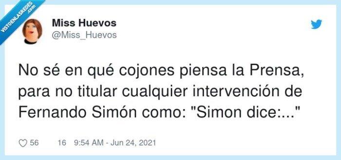 dice,fernando simon,intervención,simon says
