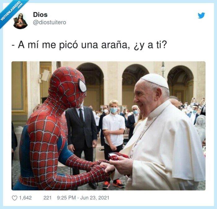 araña,papa,picar,spiderman