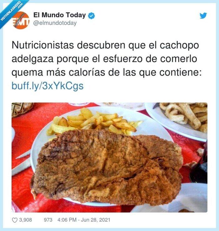adelgazar,cachopo,calorías,esfuerzo,nutricionistas