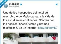 Enlace a Lo raro es que no le hayan metido fuego, por @elmundoes